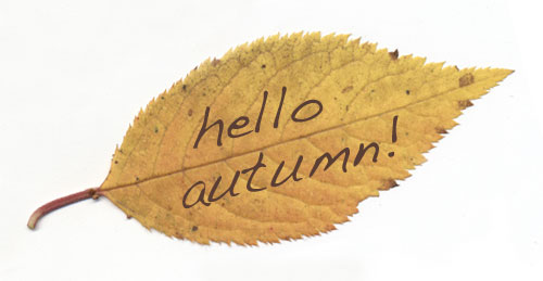 Autumn-hello