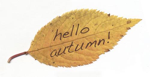 Autumn-hello